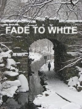 FADE TO WHITE | Excerpt - White Knuckle